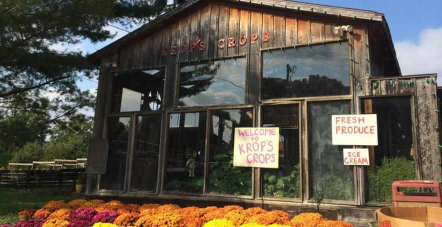 Krops Crops